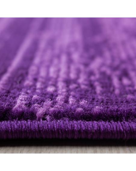 Moderner Wohnzimmer Jugendzimmer Teppich Kurzflor Lila Violette